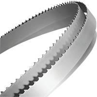 "Starrett Duratec SFB Bandsaw Blade 6tpi 62 x ¼"""
