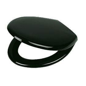 Carrara and Matta Thermoplastic Toilet Seat Black
