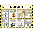 COSHH Poster 420 x 594mm