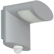 Ranex Preben Grey Wall Light with PIR Sensor 3W