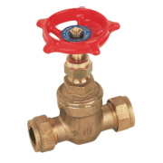 Pegler Gate Valve 22mm