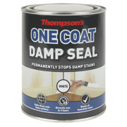 Thompsons One Coat Damp Seal White 750ml