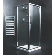 Pivot Door Shower Enclosure Polished Silver 880mm