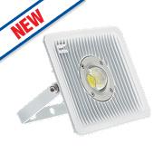 Brackenheath ispot C Driverless LED Floodlight 30W White