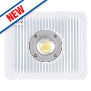 Brackenheath ispot C Driverless LED Floodlight 50W White