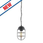 Zinc Kari Black Outdoor Hanging Lantern