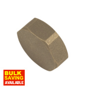 BSP Brass Female Cylinder Blank 1