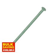 Exterior Nails Outdoor Green Corrosion-Resistant 3.75 x 75mm 0.25kg Pack