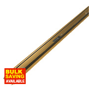 Stormguard Classic Threshold Draught & Rain Excluder Gold Anodised 914mm