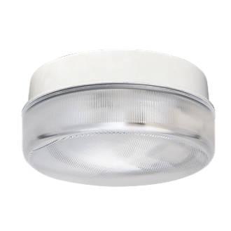 Image of ASD Drum Light White 240V
