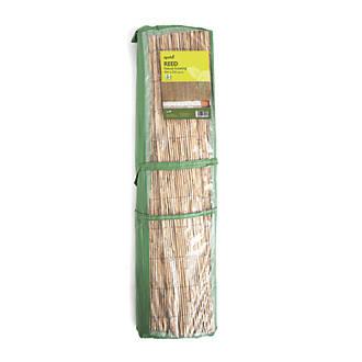 Image of Apollo Reed Garden Screen 4 x 2m