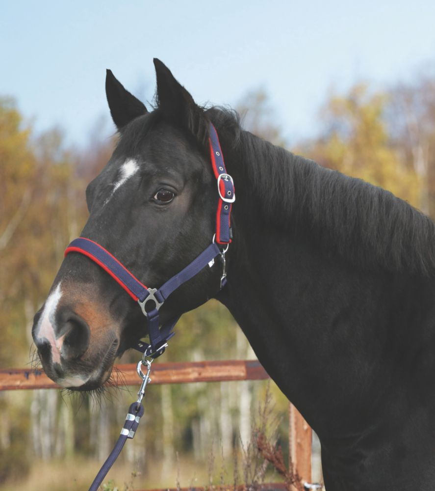 Image of Kerbl Cob Head Collar Red & Blue