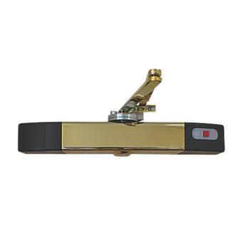 Image of Agrippa Wireless Sound-Activated Door Closer Brass