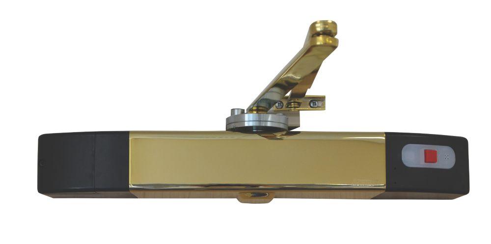 Image of Agrippa Wireless Acoustic Door Closer Brass