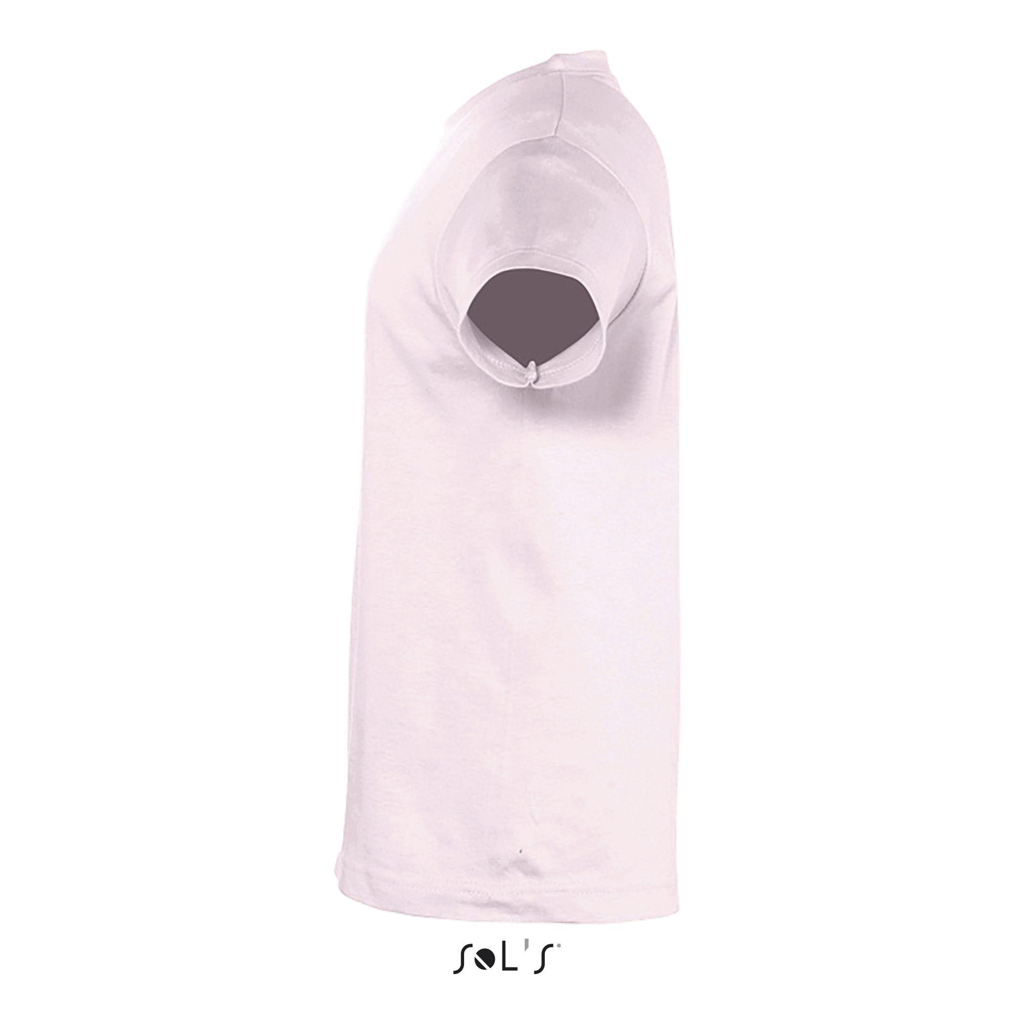 141 - Rose pâle